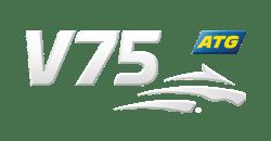 ATG 2021 - v.31 - ATG 2021 v.31
